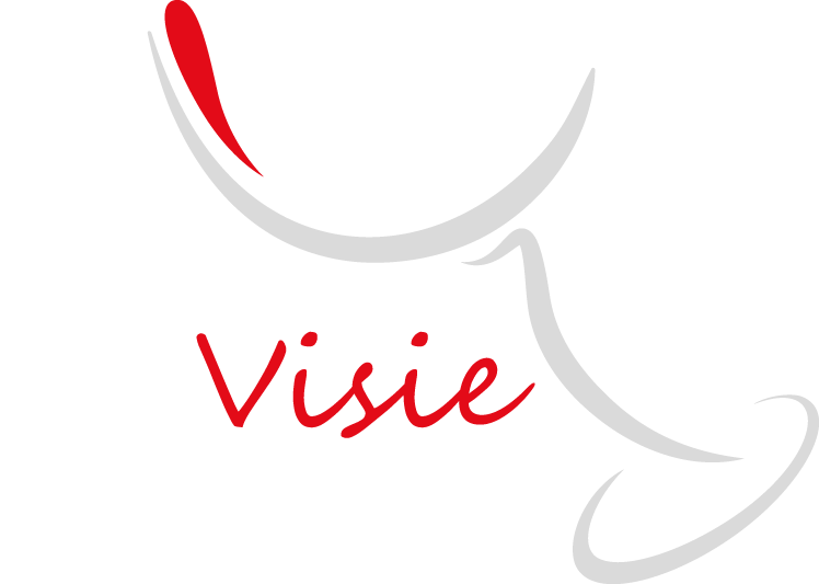 ViniVisie